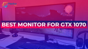 Best Monitor For GTX 1070